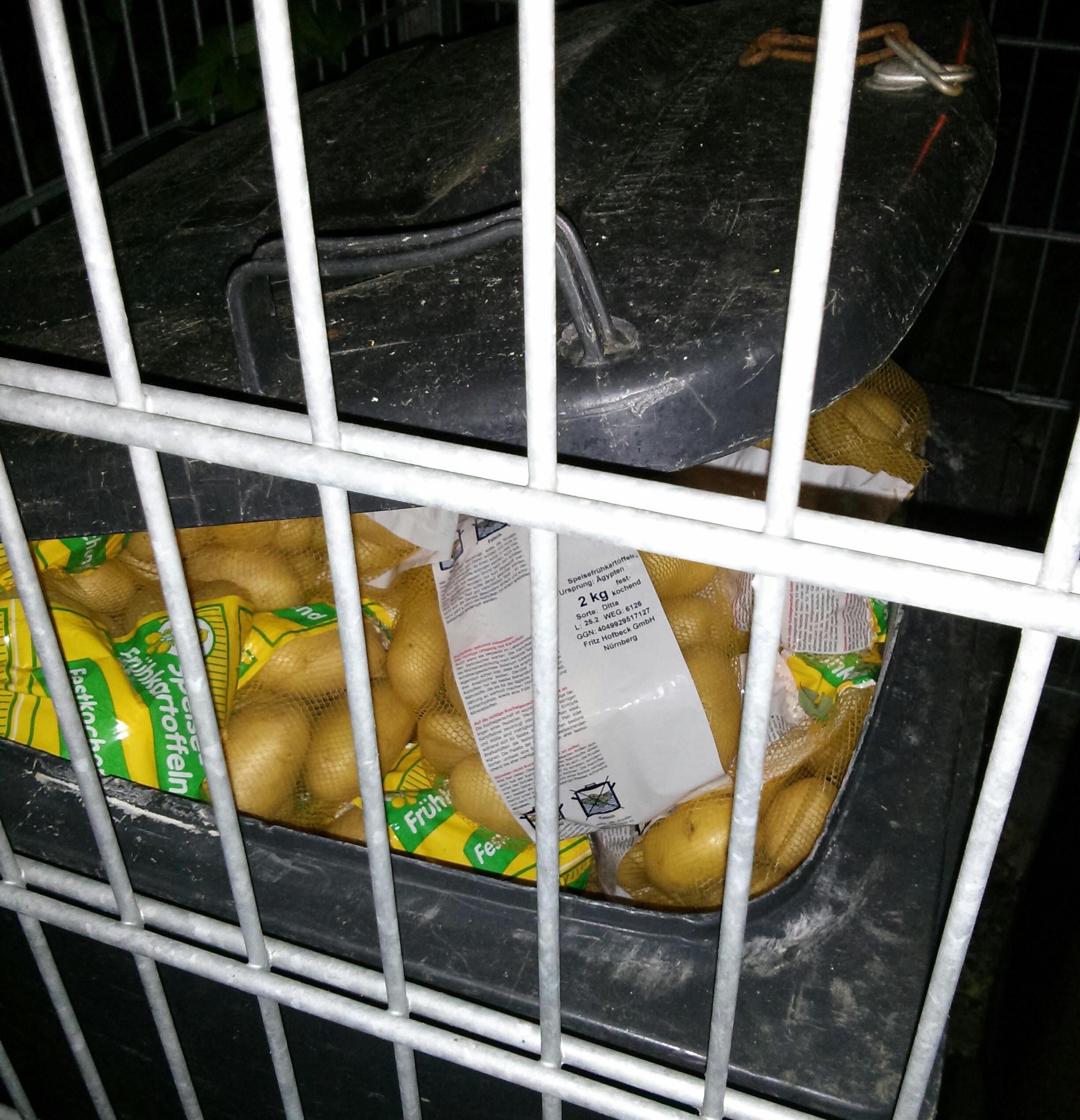 Kartoffeln in der Mülltonne Aldi-Süd