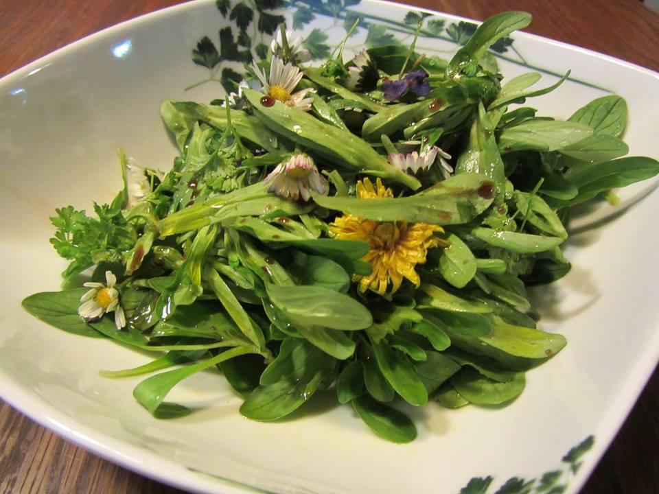 Feldsalat mit Wildblüten