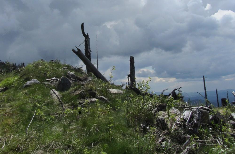 Auf dem Svaroh im Bayerischen Wald