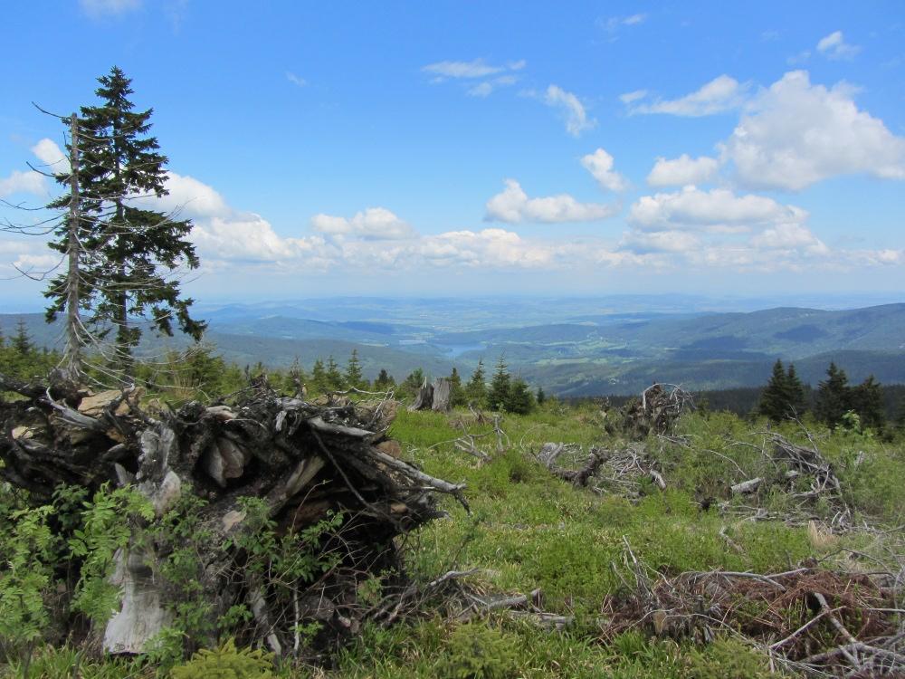 Svaroh - Ausblick nach Tschechien