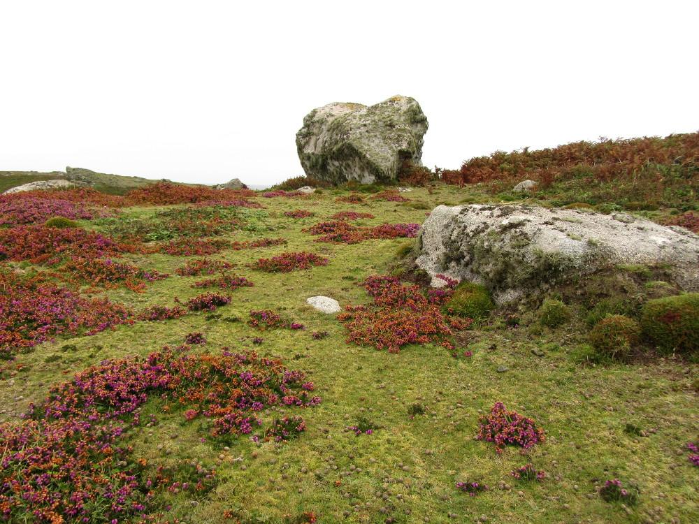Öko-Urlaub in England White Island