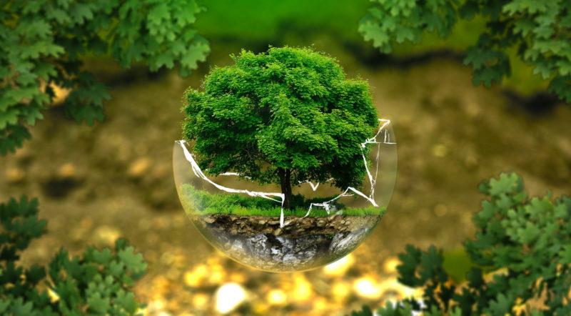 Alltagstauglich nachhaltig leben